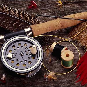 Охотничьи и рыболовные магазины Кодино